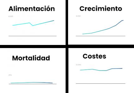Gráfico - Poryecciones