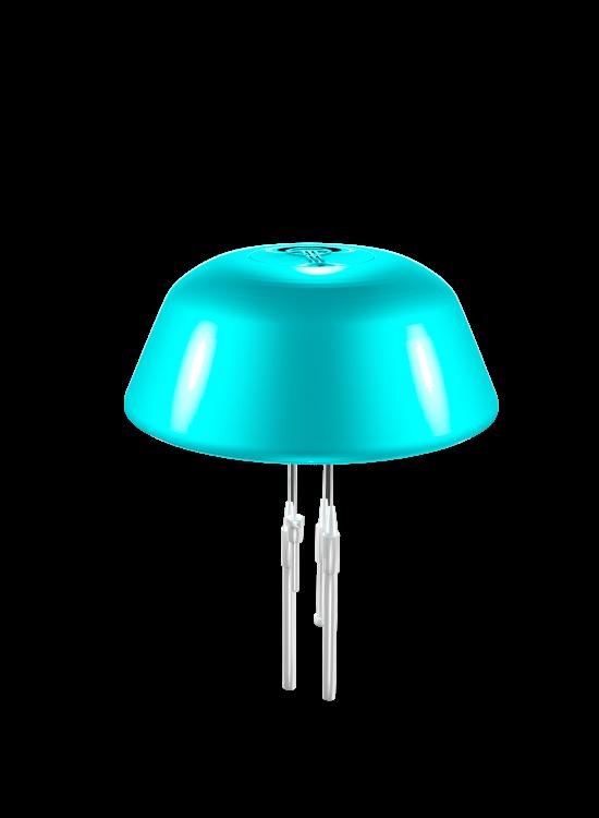 medusa-aqua-transparente