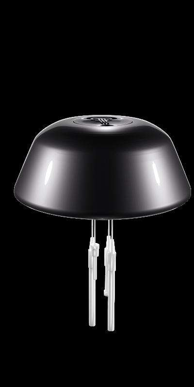 medusa-black-Transparente